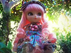 (Linayum) Tags: pullip pullipalicedujardin pullips pullipalicedujardinpinkversion alicedujardinseriespink junplanning doll dolls mueca muecas kawaii cute linayum