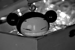 21 (Andrea L. Pereira R.) Tags: pucca reto fotogrfico juguete caja bokeh
