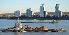 GPS India + GPS Battler + SWS Suffolk (1) @ Gallions Reach 29-11-16 (AJBC_1) Tags: london riverthames gallionsreach gpsmarine gpsbattler tug tugboat multipurposevessel multicat neptuneshipyards eurocarrier ship boat vessel dlrblog england unitedkingdom uk ajc northwoolwich eastlondon newham londonboroughofnewham nikond3200 gpsindia barge barge1501 swalshsonsltd pushertug swssuffolk