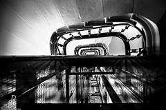"""""""Comme un choix"""" (Like choice) Le vrai message de cette photo que j'ai voulu exprim, c'est mont par l'escalier avec sa force intrieur ou mont par l'ascenseur par l'aide extrieur... ET puis il y'a le ct graphique qui colle bien  (Damien Parra Carilao) Tags: monochrome white black blackandwhite philosophy philosophie archilovers architecture europe france staircase upstairs escalier lyonnais onlylyon photographe photographer photography noiretblanc lyon instagramapp"""