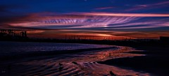 Peaceful Sunset (beachpeepsrus) Tags: shore sky sunset shorefront seagull sihlouette beach water westcoast wave