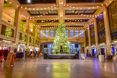 Holidays (seanbeebe_photo) Tags: asburypark conventionhall christmastree nj newjersey holidays