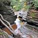 0752 Buttermilk Falls State Park