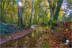 """La Seine au petit Versailles """"2016"""" (Christian Labeaune) Tags: 2016 paysages christianlabeaune châtillonnais laseine chatillonsurseine21400 bourgognecôtedor france"""