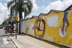 COTIDIANO (Evandro Photografy) Tags: instalaesartsticasnomurodocaismaufotoevandroo instalaes artsticas no muro do cais mau foto evandro olive