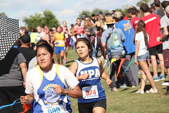 State XC 2016 1867 (Az Skies Photography) Tags: aia state cross country meet aiastatecrosscountrymeet statemeet crosscountry crosscountrymeet november 5 2016 november52016 1152016 11516 canon eos rebel t2i canoneosrebelt2i eosrebelt2i run runner runners running action sport sports high school xc highschool highschoolxc highschoolcrosscountry championship championshiprace statechampionshiprace statexcchampionshiprace races racers racing div division iv girls divsioniv divgirls divisionivgirls divgirlsrace divisionivgirlsrace