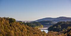 Loch Drunkie (Sarah-86) Tags: nikond810 landscape scotland autumn mist trossachs highland trees loch water woodland