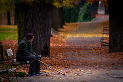 Reflexiones (AvideCai) Tags: avidecai parque gente otoo calle ciudad