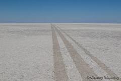 30-Botswana_2016 (Beverly Houwing) Tags: africa botswana desert dry endless flat kalahari makadigkadipans massive pattern polygons pristine saltpan white