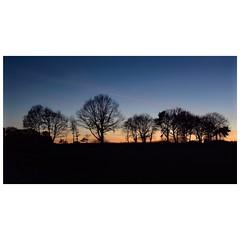 Ruhiger Abend (Nikonfotografie) Tags: landscapephotography landscape landschaft stimmungsvoll winter nikond7100 nikonofficials nikonlove bume lichtundschatten himmel niedersachsen meinnorden besinnlich sunsetlovers sunset abendstunden abendstimmung
