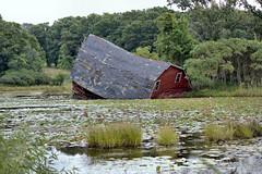 sinking barn (MatthewAtkinson) Tags: sinking barn farm