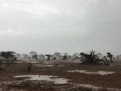 Rain in Tsavo