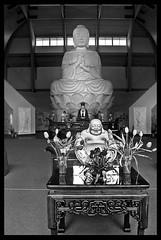Chuang Yen Monastery - Kent, NY  (2005) (Ebanator) Tags: chuangyenmonastery buddha buddhisttemple buddhastatue buddhistmonestary putnamcountynewyork carmelny kentny nikoncoolpix995 statue religious temple