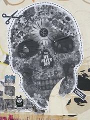 """Cyrcle """"We will never die"""" (nolionsinengland) Tags: street flower london art up collage skull paste dude layers tear"""
