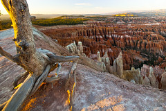 Bryce Canyon-Inspiration Point sunset (doveoggi) Tags: sunset utah 3738 brycecanyonnp the4elements photocontesttnc12