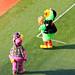 Slider & Pirate Parrot