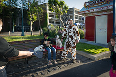 Dog man in SF (Alex Hoffmaister) Tags: do to