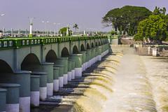 Grand Anaicut (Kumaravel) Tags: travel india water nikon day dam clear tamilnadu kumar kallanai kumaravel cauveryriver grandanaicut d3100 கல்லணை
