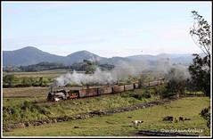 Steam Hauled Coal Trains on the EF Dona Teresa Cristina Railway in Brazil (wrecksandrelics) Tags: tubarao steamlocomotive alco metre jaguaruna americanlocomotivecompany metreguage donateresacristinarailway