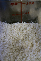 Koji (Edsel L) Tags: ohio zeiss t unitedstates rice mm mold fe za f4 oberlin koji fermentation oss mycelium 2470 aspergillus variotessar a7r aspergillusoryzae oryzae ilce7r zeissvariotessartfe2470mmf4zaoss