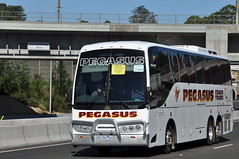 'I am rail bus ...' (highplains68) Tags: bus pegasus australia nsw newsouthwales aus m2motorway roadcoach