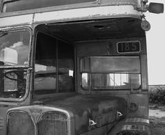 Ex London transport RT4028. (Ledlon89) Tags: bus london transport lt londonbus lte aecregent rtbus bsues