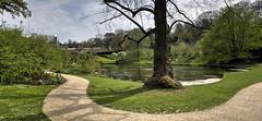 Dyrham Park (ajr1961) Tags: park trees tree water sony sigma national trust f28 hdr dyrham 19mm nex6