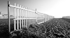 Cerca de la playa (Fer Gonzalez 2.8) Tags: leica morning beach monochrome grid blackwhite cerca mardelplata