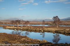 Rannoch Moor - Loch Ba (Neil Sutton Photography) Tags: winter snow reflection tree landscape scotland unitedkingdom geocache rannochmoor scottishhighlands bridgeoforchy lochba a82
