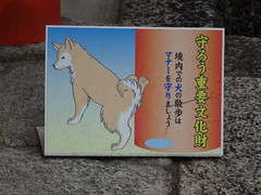 Temples welcome dogs, but they don't want to be pissed on.