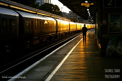 Basing-stoked (Saumil U. Shah) Tags: saumil shah saumilshah therealsaumil spectrallines uk england britain basingstoke railway train tracks station sunset goldenhour