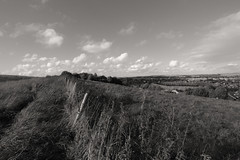 Field Views (Crisp-13) Tags: black white monochrome field grass sky cloud fence barbed wire wide angle