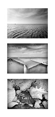 Triptyque vacances (Gelan') Tags: triptyque triptych bw sea ocean vacances holidays 3 beach plage noir coquillages shell