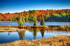 Robinson Lake (xplrd) (anj_p) Tags: isle robinsonlake southalgonquin whitney autumn fall foliage lake trees colors charmingplace
