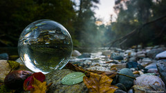 Leaves & Stones (florianhuber1) Tags: autumn inverted