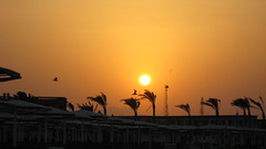 IMG_1236 (Sergio_from_Chernihiv) Tags: hurghada egypt 2008