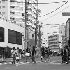 160911_ZenzaBronicaS2_009 (Matsui Hiroyuki) Tags: zenzabronicas2 zenzanon150mmf35 epsongtx8203200dpi