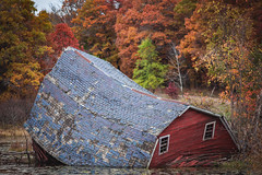 Sinking barn - Fall 2016 (michaelraleigh) Tags: 200mm autumn f28l serene closeup reflection vintage canon fall red sinking secluded barn pinetrees hidden infocus longshot minnesota outdoors green canoneos5dmarkii sinkingbarn highquality blurred