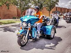 Harley Davidson trike bike (delmarvausa) Tags: southerndelawaware georgetowndelaware sussexcounty delaware sussexde delmarva travelingwall wallthatheals vietnamveterans memorial deltech georgetownde sussexcountyde georgetown motorcycle motorcycleescort motorcycleriders bikers teal harley harleydavidson 3wheeler trike
