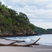 Rugged coastline of Guanacaste