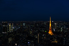 Illuminated Tokyo Tower and skyline at night from Roppongi Hills (basair) Tags: dusk tokyoprefecture japan tokyotower skyline city cityscape tower travel asia skyscraper downtowndistrict urbanscene night aerialview monuments roppongihills citylife urbanskyline dark directlyabove crowded japaneseculture famousplace eastasia buildingexterior moritower twilight copyspace streetlight roppongi architecture outdoors horizontal highangleview panoramic minatoward illuminated modern tokyobay officebuilding business observationpoint financialdistrict longexposure town bridgemanmadestructure street constructionindustry
