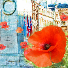 We will remember (Lemon~art) Tags: remembranceday remember poppy cenotaph london texture manipulation flag ensign