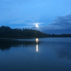 Super moon. West Arm, Tamar River.