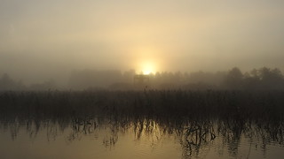 Foggy Morning Sunrise. Õisu järv.