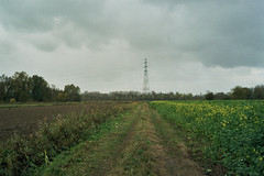 pylon (InSoManyWords) Tags: film fujisuperia200 fujifilm rollei35 belgium rain