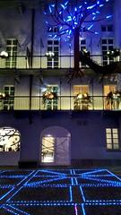 Giardino barocco verticale, luci d'artista Torino #giardinobaroccoverticale #lucidartista #artisticlights #palazzovalperga #turin #cisco@photo #flyingtree #light #magiclight (Ciscobolo) Tags: light turin magiclight palazzovalperga lucidartista flyingtree cisco giardinobaroccoverticale artisticlights