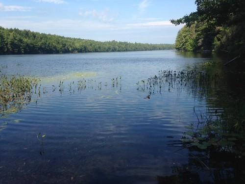 Granger Pond - www.amazingfishametric.com