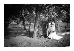 apple tree wedding (GuitarGeert) Tags: nikon d700 2875 tamron wedding huwelijk trouwerij zwartwit blackandwhite niksilverefexpro