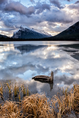 A Lake of Clouds and Mountains (Kristin Repsher) Tags: alberta banff banffnationalpark canada canadianrockies clouds d750 lakes log longexposure mountains nikon reflection rockies rockymountains sunrise vermillionlakes