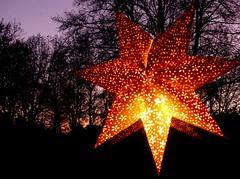 sunset today (BrigitteE1) Tags: sunset sonnenuntergang silhouette trees sky window star advent weihnachtszeit christmastime stern licht light